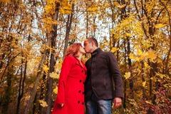 Jeunes baisers de couples dans la forêt d'automne parmi les arbres colorés Photo libre de droits