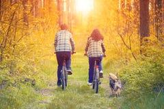 Jeunes bicyclettes de tour de couples dans la forêt photo stock