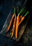 Jeunes carottes entières fraîches frites Images libres de droits
