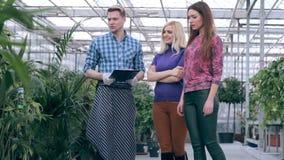 Jeunes clients de portion de fleuriste en serre chaude banque de vidéos