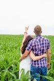 Jeunes couples adultes affectueux heureux passant le temps sur le champ le jour ensoleillé Photographie stock libre de droits