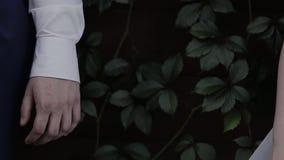 Jeunes couples affectueux tenant des mains, étreindre et embrasser clips vidéos