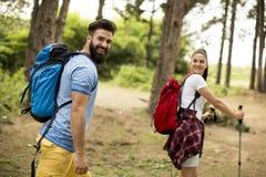 Jeunes couples augmentant en montagne photos libres de droits