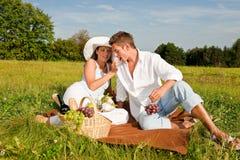 Jeunes couples ayant le pique-nique dans le pré Photographie stock libre de droits