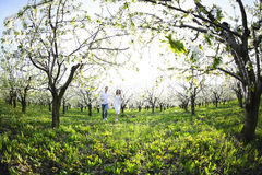 Jeunes couples dans l'amour courant au printemps le jardin de fleur Photos libres de droits