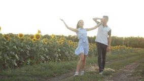 Jeunes couples dans l'amour dansant le soir au coucher du soleil dans un domaine des tournesols clips vidéos