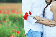 Jeunes couples dans l'amour embrassant et étreignant au champ de pavot Photos stock