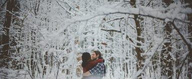 Jeunes couples dans l'amour embrassant dans la forêt froide Photo libre de droits
