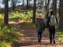 Jeunes couples dans l'amour tenant des mains et marchant par un parc un jour ensoleillé d'automne photos libres de droits