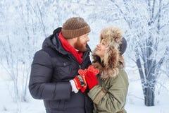 Jeunes couples dans la forêt d'hiver Photos stock
