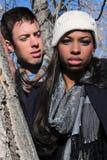 Jeunes couples dans un arbre Image libre de droits