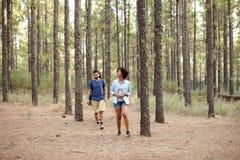 Jeunes couples dans une plantation de pne Images stock