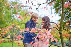 Jeunes couples de datation à Paris un jour d'automne Photo stock