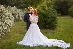 Jeunes couples de jeunes mariés dans un jardin de floraison Image libre de droits