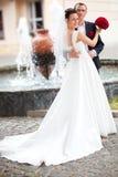 Jeunes couples de mariage Image libre de droits