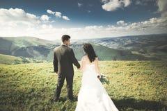 Jeunes couples de mariage dans l'amour tenant des mains sur le fond des montagnes Photo libre de droits