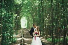 Jeunes couples de mariage, jeunes mariés posant sur une voie de chemin de fer Photos stock