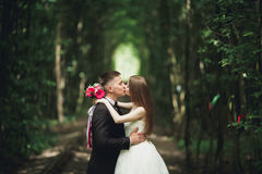 Jeunes couples de mariage, jeunes mariés posant sur une voie de chemin de fer Images libres de droits