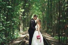 Jeunes couples de mariage, jeunes mariés posant sur une voie de chemin de fer Photos libres de droits