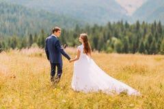 Jeunes couples de mariage marchant sur le champ ensoleillé avec le fond de forêt Vue arrière Photo stock