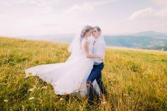 Jeunes couples de mariage posant le voile de la jeune mariée d'uder sur le champ ensoleillé venteux avec Forest Hills éloigné com Photographie stock libre de droits