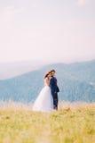 Jeunes couples de mariage posant sur le champ ensoleillé avec Forest Hills éloigné comme fond Jeune mariée tenant doucement des é Image libre de droits