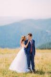 Jeunes couples de mariage posant sur le champ ensoleillé avec Forest Hills éloigné comme fond La belle jeune mariée va embrasser  Image libre de droits