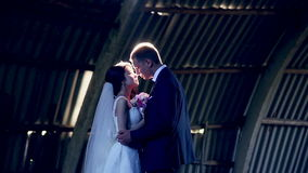 Jeunes couples E banque de vidéos