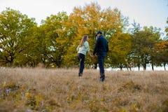 Jeunes couples en nature Images stock