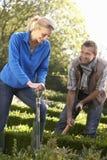Jeunes couples fonctionnant dans le jardin Photos stock