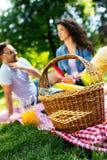Jeunes couples heureux appréciant le pique-nique en parc image stock
