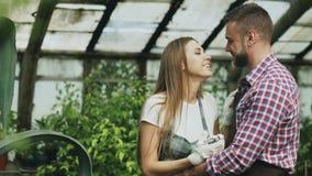 Jeunes couples heureux de fleuriste dans le tablier fonctionnant en serre chaude La femme gaie embrassent ses fleurs de arrosage  Images stock