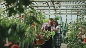 Jeunes couples heureux de fleuriste dans le tablier fonctionnant en serre chaude La femme gaie embrassent ses fleurs de arrosage  Photo libre de droits