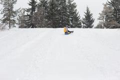 Jeunes couples heureux marchant en parc d'hiver Images libres de droits