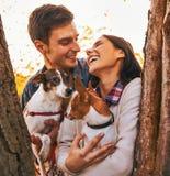 Jeunes couples heureux tenant des chiens en parc Photos stock