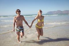 Jeunes couples heureux tenant des mains tout en courant à la plage Images stock