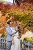 Jeunes couples japonais dans le moment romantique Photo stock