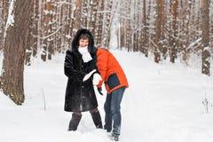 Jeunes couples jouant dans la neige, ayant le combat de boule de neige Images libres de droits