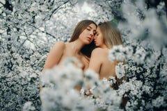 Jeunes couples lesbiens parmi les cerisiers de floraison image stock
