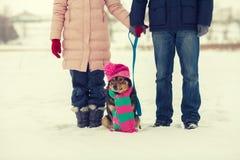 Jeunes couples marchant avec le chien Image libre de droits