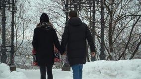 Jeunes couples marchant en parc d'hiver couvert de neige tenant des mains Loisirs d'hiver des couples affectueux heureux dos clips vidéos