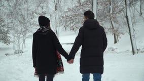 Jeunes couples marchant en parc d'hiver couvert de neige tenant des mains Loisirs extérieurs d'hiver des couples affectueux heure clips vidéos