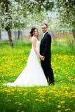 Jeunes couples nuptiales devant le fond de nature Image stock