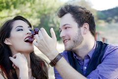 Jeunes couples pique-niquant en parc Images stock