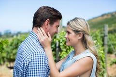 Jeunes couples regardant l'un l'autre dans le vignoble Photos stock