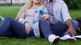 Jeunes couples se reposant sur l'herbe ensemble, fille se penchant contre le type, relations banque de vidéos