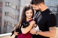 Jeunes couples tenant des chats dans des mains sur la terrasse Photo libre de droits