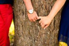 Jeunes couples tenant des mains contre des arbres en parc Images libres de droits