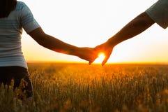 Jeunes couples tenant des mains dans le domaine de blé Images stock