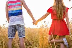Jeunes couples tenant des mains dans le domaine de blé le jour ensoleillé d'été Photos stock